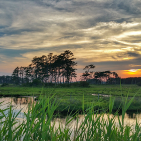 Island Sunset by Shirley Prothero - Landscapes Sunsets & Sunrises ( waterscape, sunsets, virginia, wildlife )