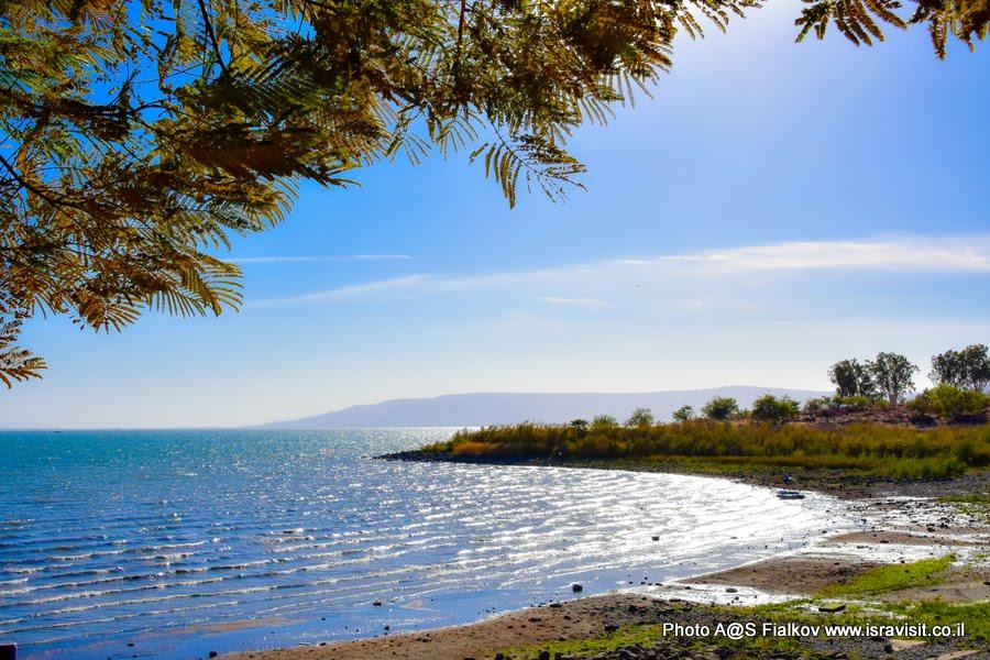 Озеро Кинерет, Тивериа́дское озеро, Галиле́йское море или Геннисаре́тское озеро. Экскурсия в Израиле.