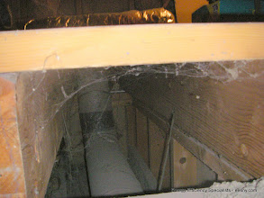 Photo: Hole down inside the house!!  How to deal with this??