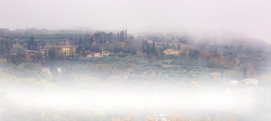 Nebbia agli irti colli di zsim67