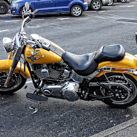 Stow motorbike 01 by Michael Moore - Transportation Motorcycles