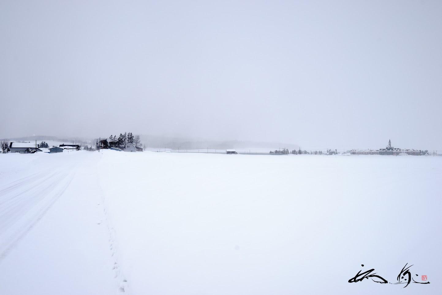 雪が舞う白銀の世界