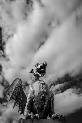 Dragon di Erica C. Taranto