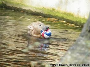 Photo: Wasserballspiel im Sonnenschein :-)