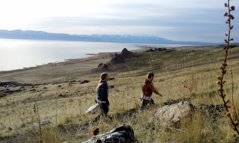 Photo: Antelope Island is a tad greener than it looks from afar.