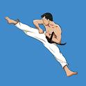 Mastering Taekwondo : Martial Arts & Self Defense icon