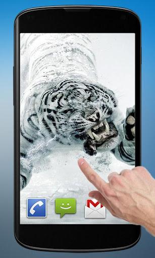 免費下載個人化APP|ダイビング虎 app開箱文|APP開箱王