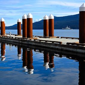 Arbutus Ridge, Salish Sea by Campbell McCubbin - Buildings & Architecture Bridges & Suspended Structures ( arbutus ridge, marina, reflection, navy, ship, dock, water, pilings )
