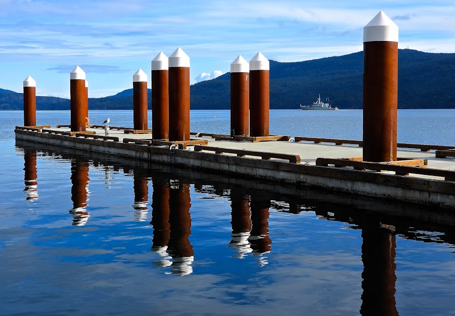 Arbutus Ridge, Salish Sea by Campbell McCubbin - Buildings & Architecture Bridges & Suspended Structures ( arbutus ridge, marina, reflection, navy, ship, dock, water, pilings )