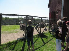 Photo: Lauantaiaamuna tutustuttiin eläinpuistoon.