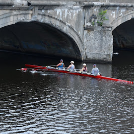 by Liz Rosas - Sports & Fitness Watersports ( rowing, sculling, charles river, cambridge, harvard )
