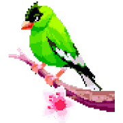 Birds Color by Number: Pixel Art, Sandbox Coloring