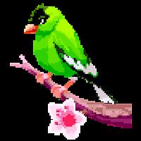 Birds Color by Number Pixel Art, Sandbox Coloring
