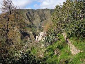 Photo: Abandoned olive farmer's house