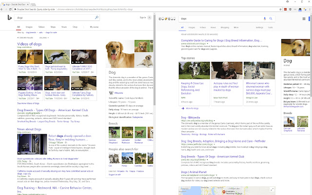 Double Shot Search: Query side-by-side