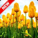 Tulips Wallpaper icon