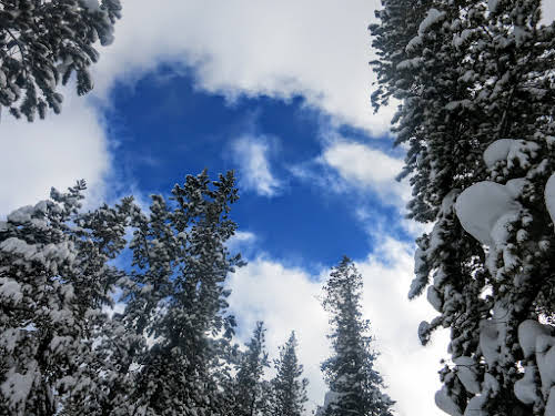 What to Do in Lake Tahoe in the Winter // Mount Rose Meadows, North Lake Tahoe