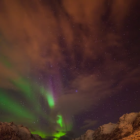Ersfjord by Geir Hammer - Landscapes Starscapes ( water, moutain, clouds, sky, purple, green, aurora, sea, night, northern light )