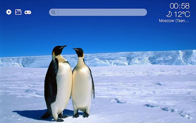 Penguins HD new free tab theme