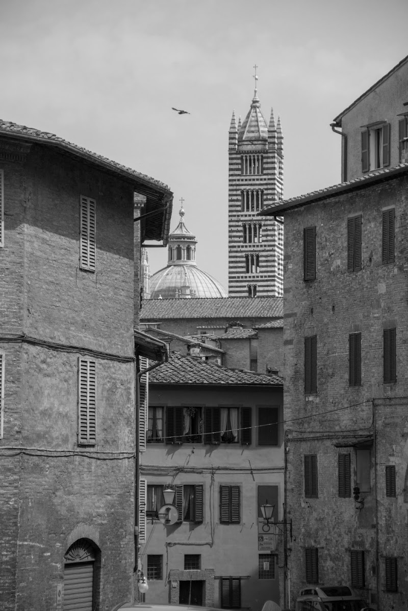 Siena BW di gnapster