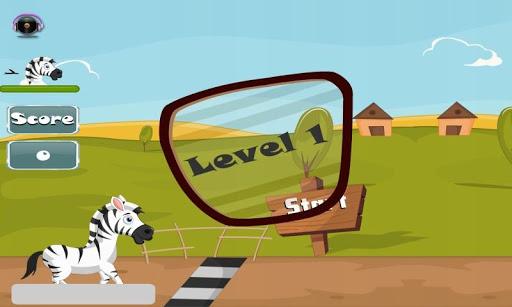 Zebra Run Run