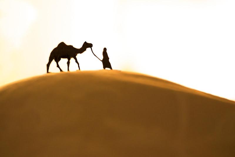 Deserto di zucco
