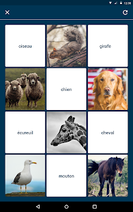 Quizlet Flashcards & Learning Screenshot 13