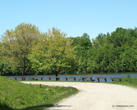Photo: View of the road at Waterbury Center State Park