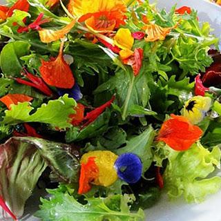Flower Salad Recipes
