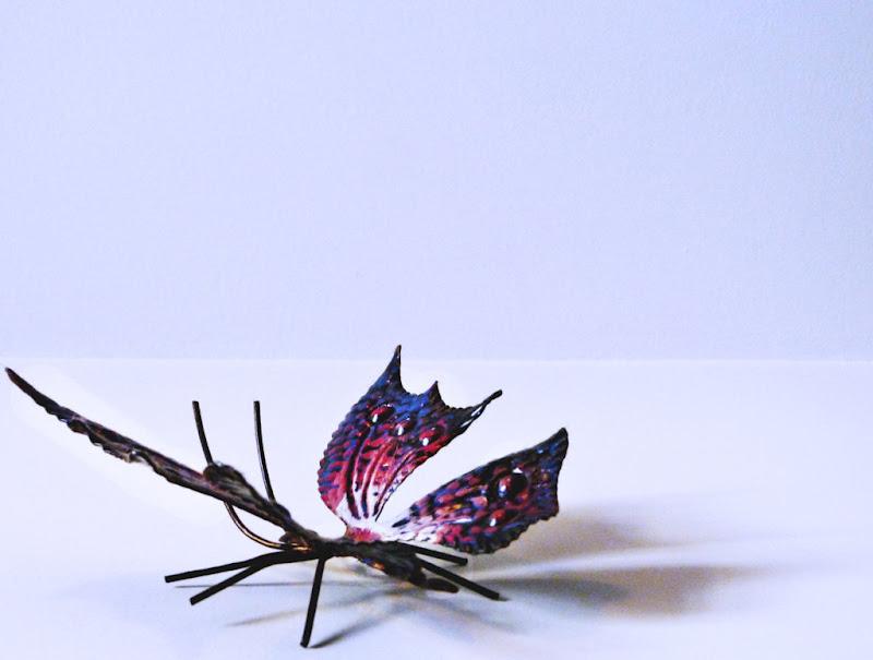 Simply Flies di Licia Croce
