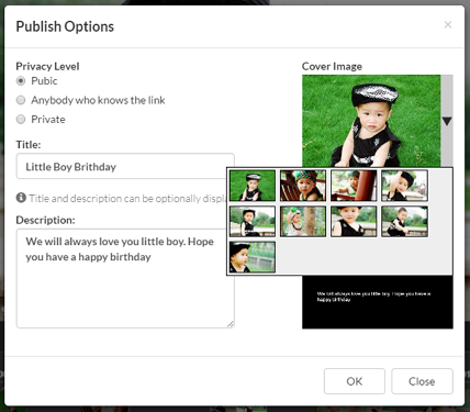 Dialog box to publish photo slideshow, with cover image selection box enabled