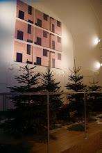 Photo: Christmas time at K+K Hotel Central, Prague