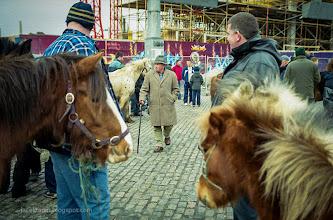 Photo: smithfield, dublin, horse market,