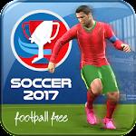 Football Euro 2016 Icon