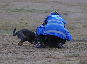 Photo: May Camilla og Dakota viser et fremragende samarbeid gjennom hele konkurransen