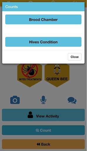 The B app hack tool