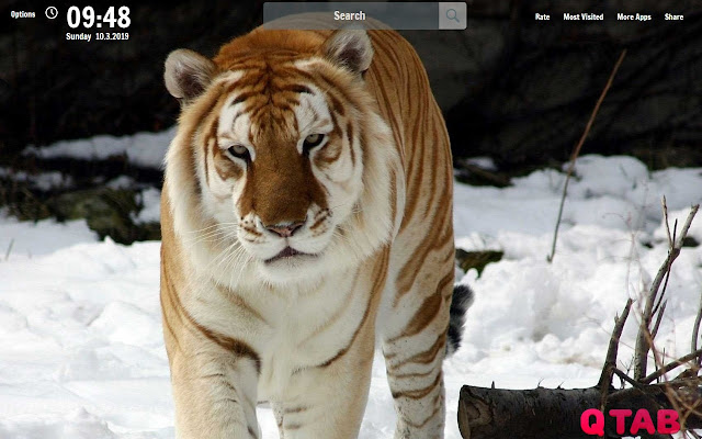 Tiger New Tab Tiger Wallpapers