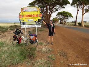 Photo: Corrigin - Dog in a Ute - Esperance to Perth by Bicycle