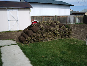 Photo: All told, about 1300sf of fresh cut sod. I ended up giving it to a guy on Craiglsist.