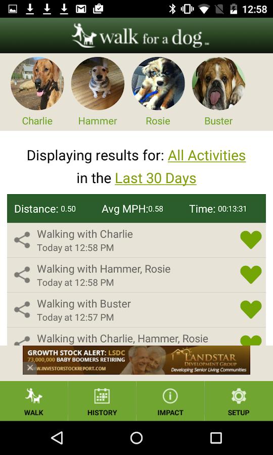Walk for a Dog - screenshot