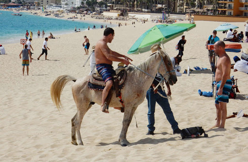 giddyup-in-Cabo - An hourlong ride on a steed along the beach can be had for about $25 in Cabo San Lucas, Mexico.