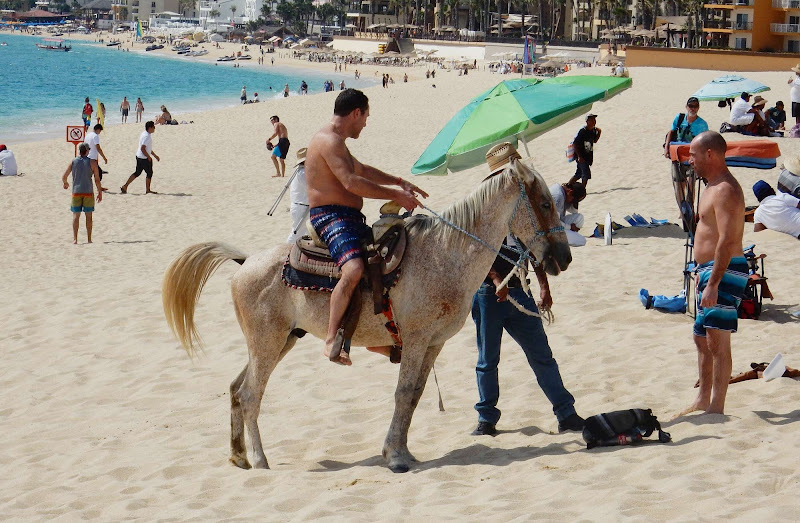 An hourlong ride on a steed along the beach can be had for about $25 in Cabo San Lucas, Mexico.