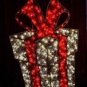 Lighted Christmas Box by Deborah Lucia - Public Holidays Christmas ( lights, red, silver, christmas, display, decorations )