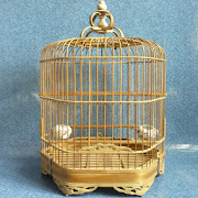 carving bird cage by cidut icon