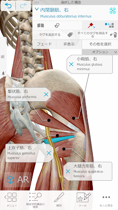 ヒューマン・アナトミー・アトラス2021: 3Dによる完璧な人体のおすすめ画像2