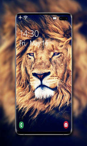 Lion Wallpaper ud83eudd81 screenshots 2
