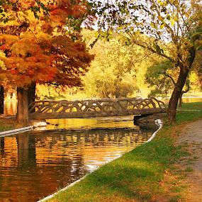 Autumn in the park by Victor Pavel - Buildings & Architecture Bridges & Suspended Structures ( park, autumn )