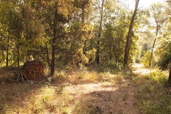 terrain à batir à Roquefort-les-Pins (06)