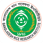 Rice Knowledge Bank