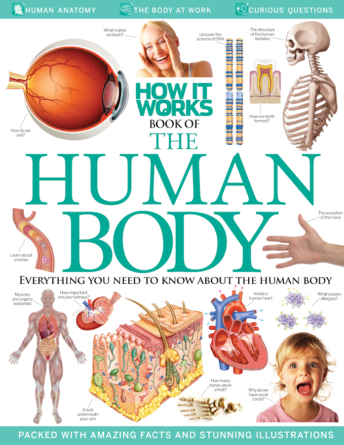 How it Works Book of The Human Body- screenshot